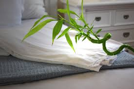 Where to buy bamboo sheets