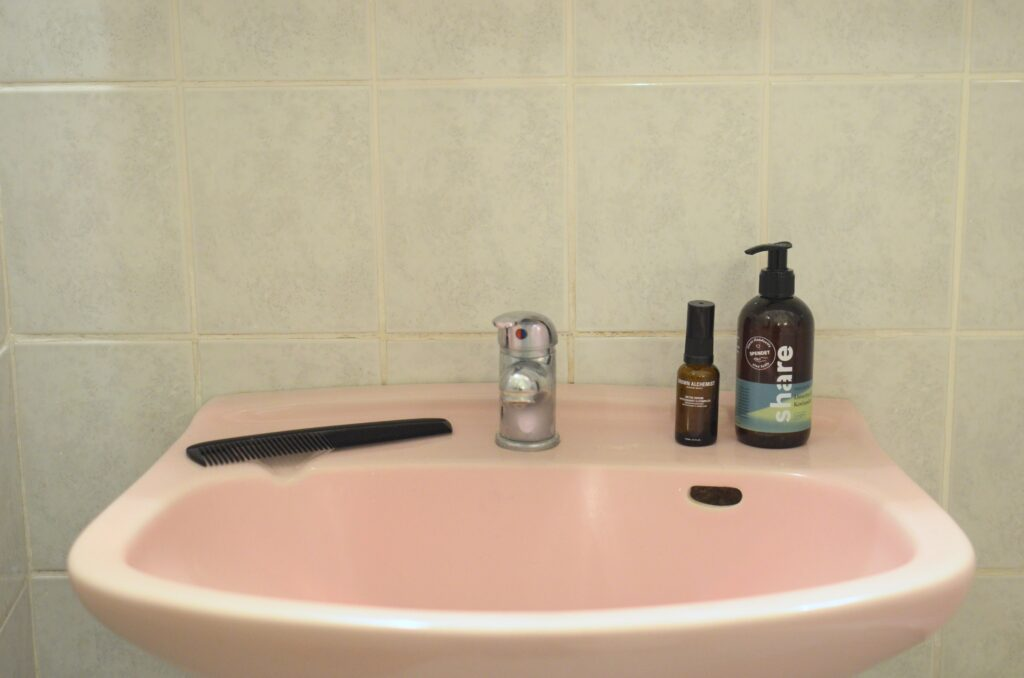 A pink toned lavatory - Scaleblaster Reviews