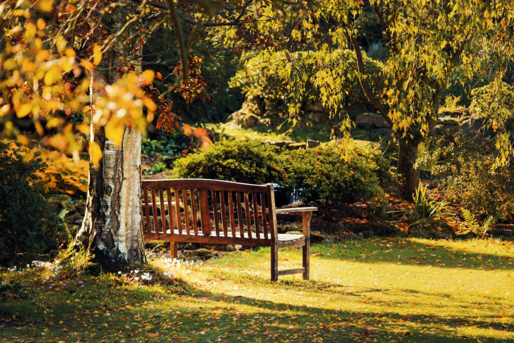 A wooden bench in an open space