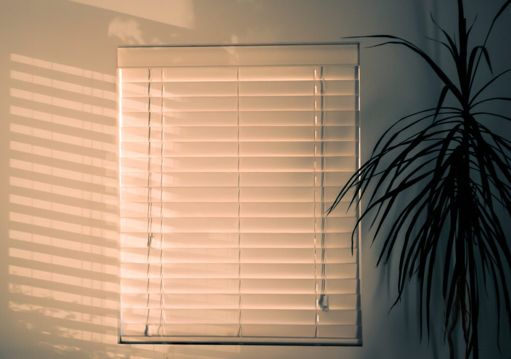Closed blinds with orange lighting and a plant