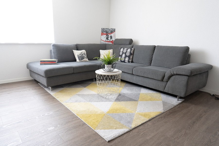 Living room with a sectional couch and a rug